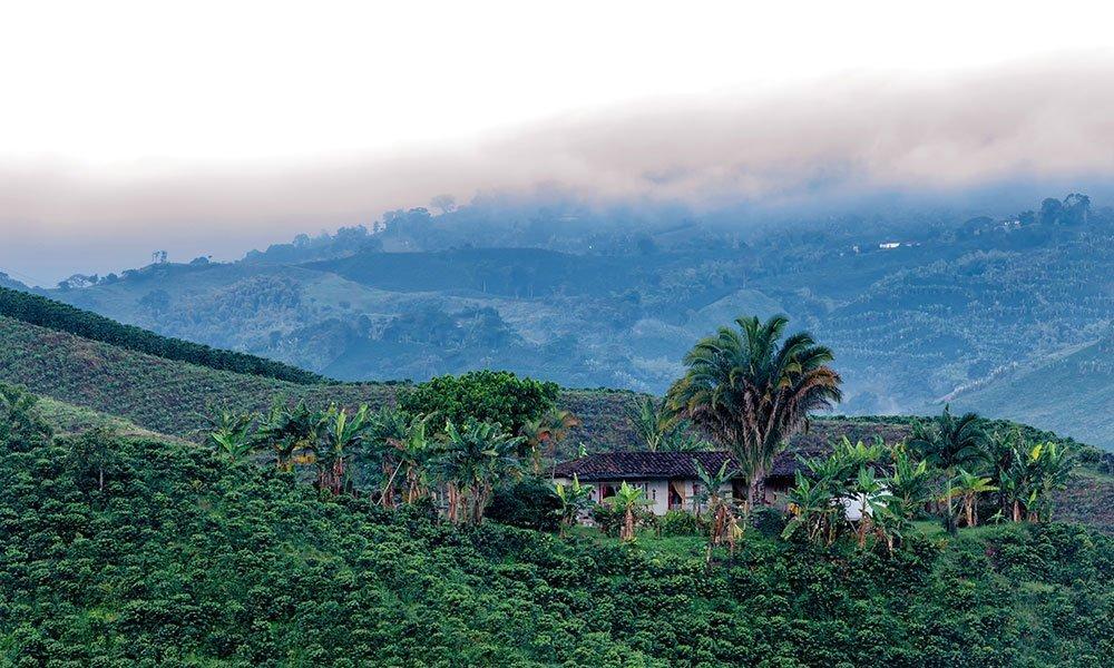 Colombia Hacienda Eje Cafetero