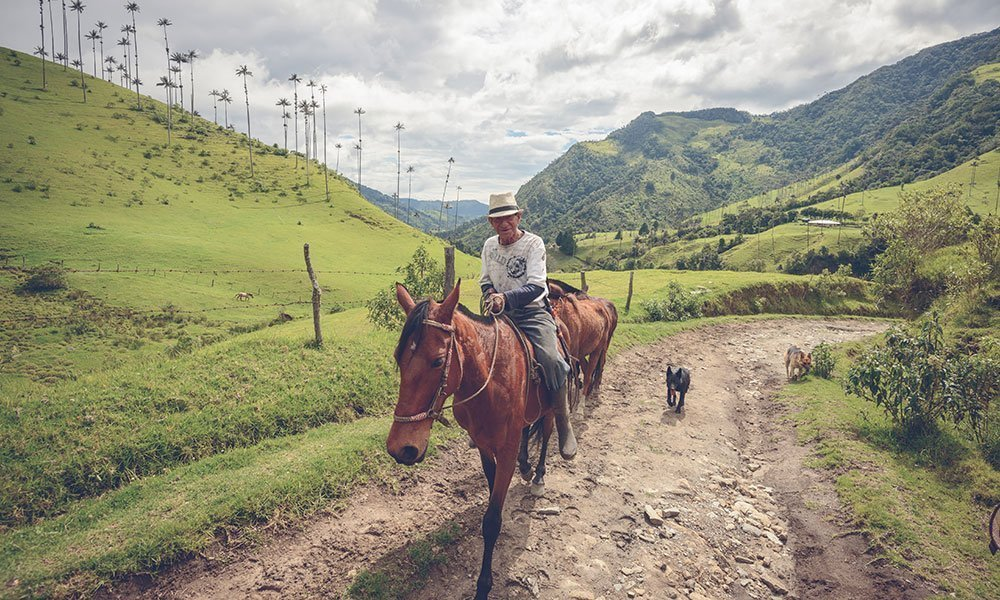 Colombia Eje Cafetero Hombre a Caballo